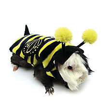 All Living Things® Pet Halloween Bumblebee Small Pet Costume