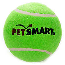 Grreat Choice™ PetSmart Jumbo Tennis Ball Dog Toy (COLOR VARIES)