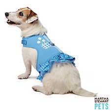 Martha Stewart Pets® Baisy & Polka Dot Dress Harness