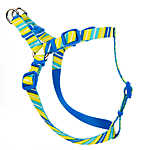 Top Paw® Striped Adjustable Dog Harness
