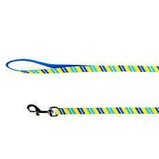 Top Paw® Striped Adjustable Dog Leash