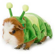All Living Things® Small Pet Caterpillar