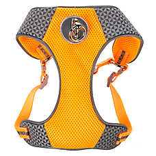 Top Paw® Comfort Reflective Dog Harness