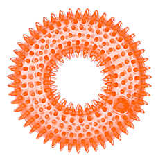 Top Paw™ Spiked Ring Dog Toy - Squeaker