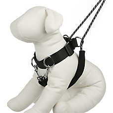 KONG® Control Dog Training Harness