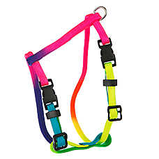 Whisker City® Ombre Rainbow Adjustable Cat Harness
