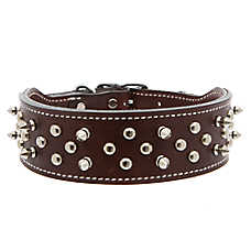 Top Paw® Double Spiked Leather Dog Collar