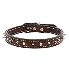 Top Paw® Single Spiked Dog Collar