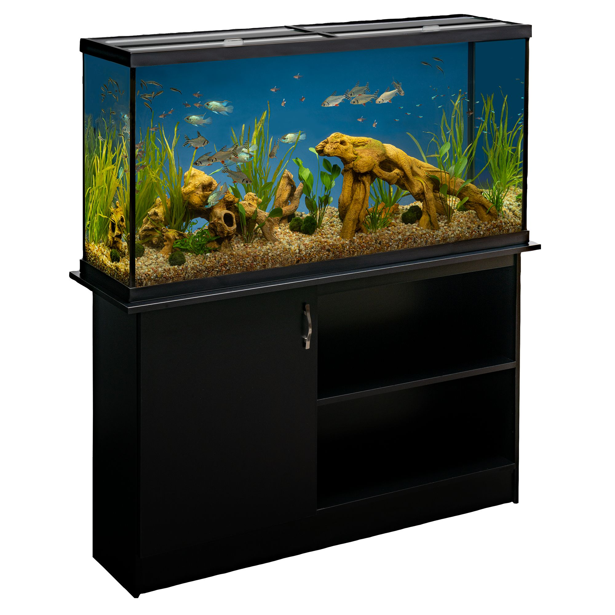 Tanks, Aquariums, & Nets