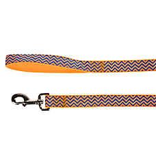 Top Paw® Toby Chevron Dog Leash