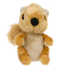 Top Paw® Squirrel Dog Toy