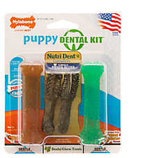 Nylabone® Puppy Dental Kit Dog Toy
