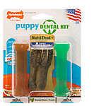 Nylabone® Puppy Dental Kit Dog Toy