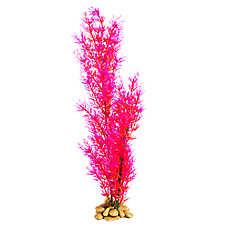 Top Fin® Coral Aquarium plant