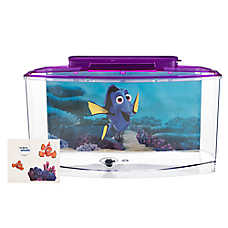 Finding Dory Betta Aquarium