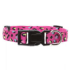 Top Paw® Cheetah Dog Collar