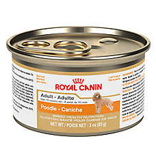 Royal Canin® Breed Health Nutrition Adult Dog Food - Poodle