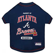 Atlanta Braves MLB Team Tee
