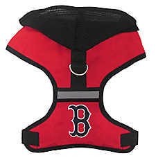Boston Red Sox MLB Harness