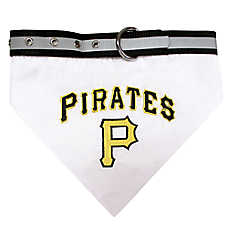Pittsburgh Pirates MLB Collar