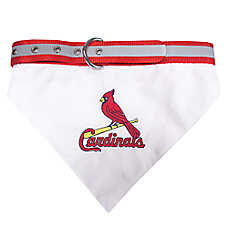 St. Louis Cardinals MLB Collar