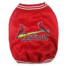 St. Louis Cardinals MLB Dugout Jacket
