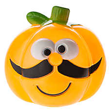 Thrills & Chills™ Pet Halloween Pumpkin Mustache Dog Toy