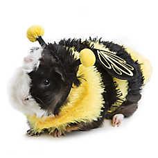 Thrills & Chills™ Pet Halloween Bee Costume