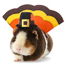 Thrills & Chills™ Pet Halloween Turkey Costume