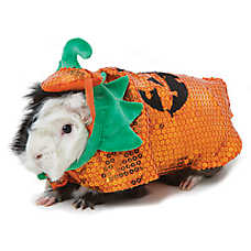 Thrills & Chills™ Pet Halloween Pumpkin Costume