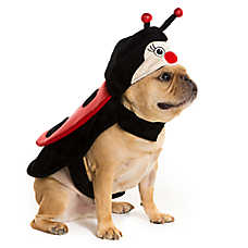 Thrills & Chills™ Pet Halloween Lady Bug Pet Costume