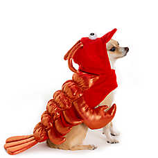 Thrills & Chills™ Pet Halloween Lobster Pet Costume