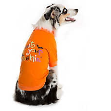"Thrills & Chills™ Pet Halloween ""Quit Your Witchin"" Dog Tee"