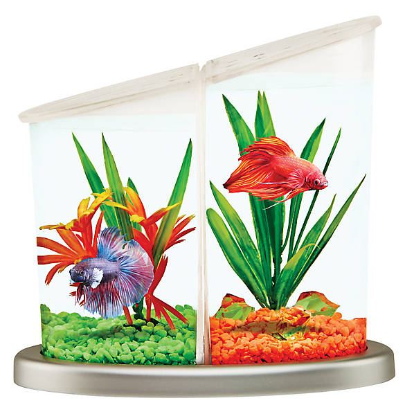 Top fin betta duplex betta tank fish aquariums petsmart for Betta fish tanks petsmart