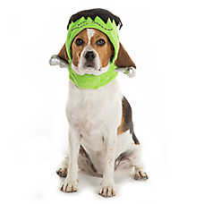 Thrills & Chills™ Pet Halloween Frankenstein Hat