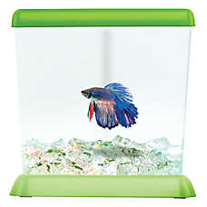 Top Fin®  Fishy Corner Betta Tank