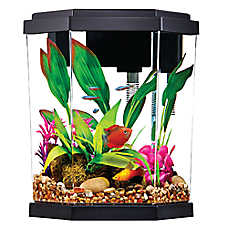 Top Fin® 2 Gallon Intrigue Aquarium Kit