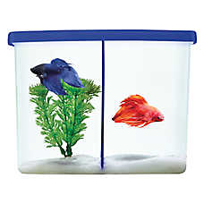 Top fin twinsies betta tank fish aquariums petsmart for Betta fish tanks petsmart