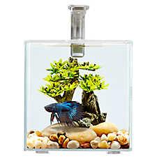 Top Fin® Calm Glass Aquarium