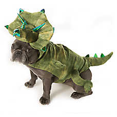 Thrills & Chills™ Pet Halloween Dinosaur Pet Costume