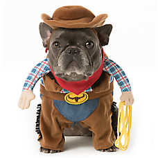 Thrills & Chills™ Pet Halloween Stand Up Cowboy Pet Costume