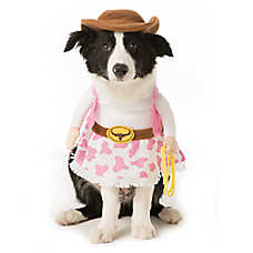 Thrills & Chills™ Pet Halloween Stand Up Cowgirl Pet Costume