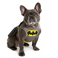 DC Comics™ Pet Halloween Batman Pet Costume