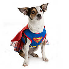 DC Comics™ Pet Halloween Supergirl Dress Pet Costume