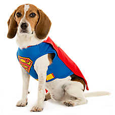 DC Comics™ Pet Halloween Superman Pet Costume