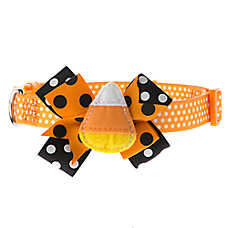 Thrills & Chills™ Pet Halloween Candy Corn Dog Collar