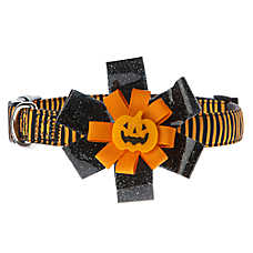 Thrills & Chills™ Pet Halloween Pumpkin Stripe Dog Collar