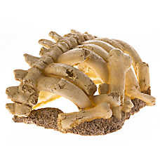 All Living Things® Elephant Bones Reptile Ornament