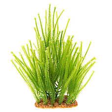 Top Fin® Green Landscape Aquarium Plant