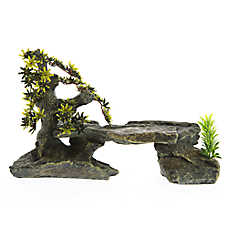 All Living Things® Slate Basking Platform